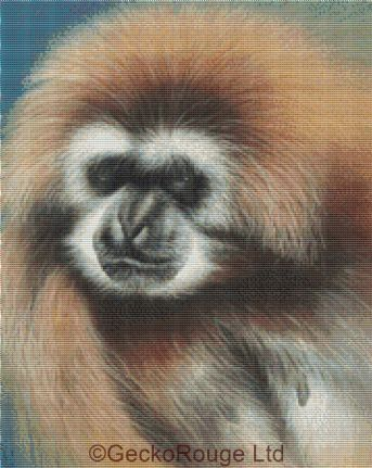 Funky (Gibbon) By David Finney Cross Stitch Kit