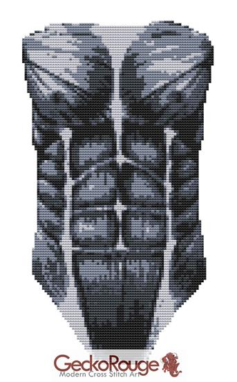 Human Biceps - Chest - Counted Cross Stitch Kit (FSCHSTMSC)