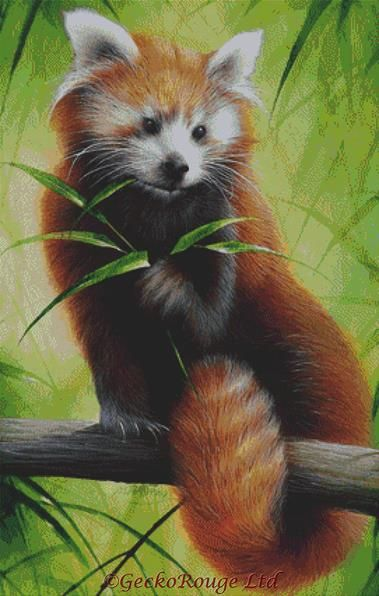 Red Panda By David Finney Cross Stitch Kit